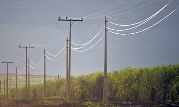 Energisa Sul-Sudeste reforça dicas de segurança durante colheita da cana-de-açúcar