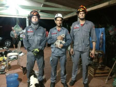 Corpo de Bombeiros de Tupã resgata gato que caiu em poço de 15 metros