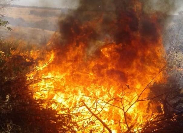 Incêndio rompe cabos de distribuição e deixa mais de cinco mil consumidores sem eletricidade em Álvares Machado