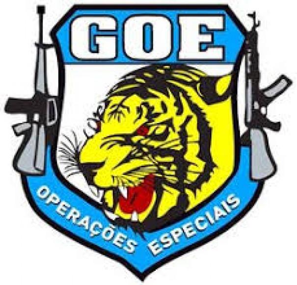 GOE da Polícia Civil de Adamantina mantém intensa rotina de treinamento e prontidão