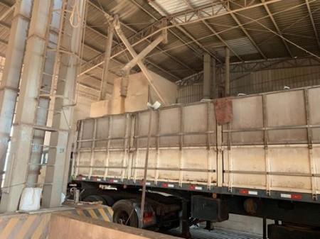 Polícia Civil de Cândido Mota recupera cargas de soja furtadas de transportadoras