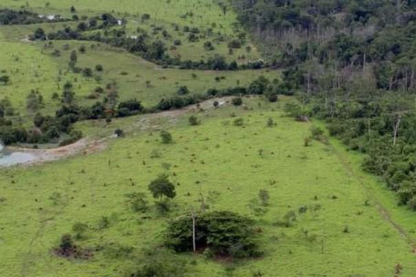 Começou nesta semana o prazo para entrega da declaração de propriedade rural