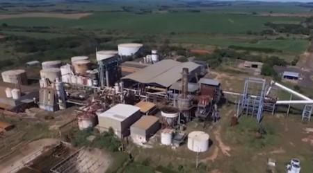 Leilão: Usina Floralco é arrematada por quase R$ 54 milhões