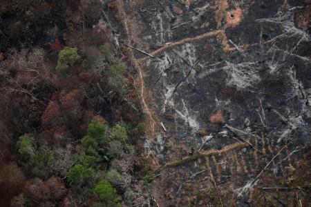 'A Amazônia precisa ser protegida', diz secretário-geral da ONU