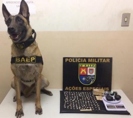Com apoio de cadela de faro, PM localiza drogas e prende homem em flagrante na Vila Brasil