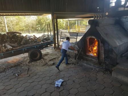 Polícia Civil incinera drogas em Flórida Paulista