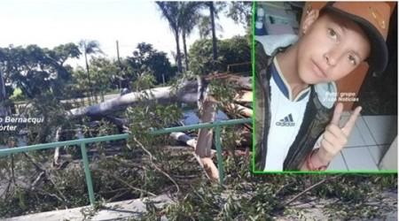 Galho de eucalipto cai em praça e mata garoto de 14 anos na região