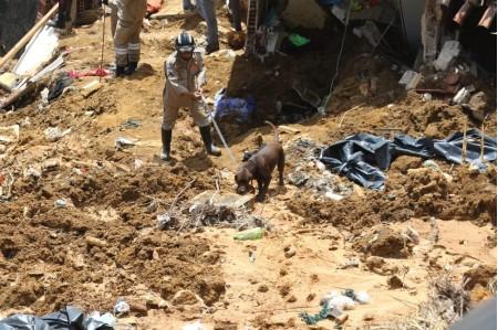 Sobe para sete o número de mortos em deslizamento de barreira no Recife
