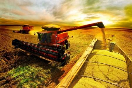 Faturamento do setor agropecuário cresce no Brasil