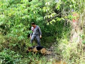 Bombeiros realizam buscas para tentar localizar homem desaparecido em Osvaldo Cruz
