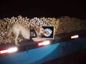 Com apoio de cão farejador, Polícia Militar encontra quase 700 quilos de maconha escondidos em caminhão