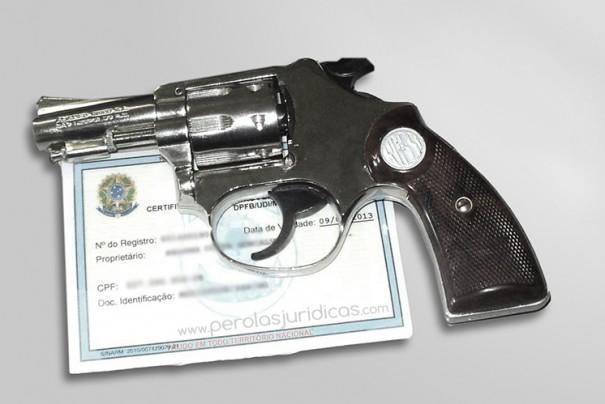 Ministros querem que decreto sobre armas inclua exigência de cofre