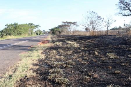 Incêndios atingem vegetações em área de loteamento e margem de rodovia na região