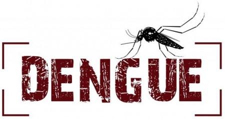 Dengue: 890 casos confirmados da doença em Osvaldo Cruz