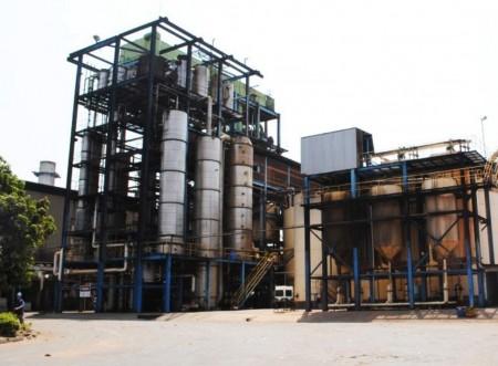 FLORALCO: novo leilão será em agosto e empresas manifestam interesse em arrematar