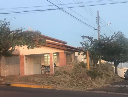 Descarte irregular de galhos gera problema para a Prefeitura de Osvaldo Cruz