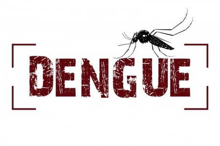 Salmourão registra um caso importado de dengue em 2019