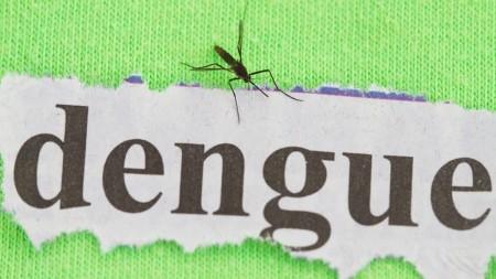 Quarta morte por dengue é registrada em Tupã este ano