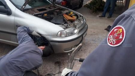Corpo de Bombeiros retira cobra que estava 'escondida' dentro de motor de carro