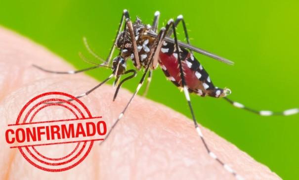 Dengue: 1.072 casos confirmados da doença em Osvaldo Cruz