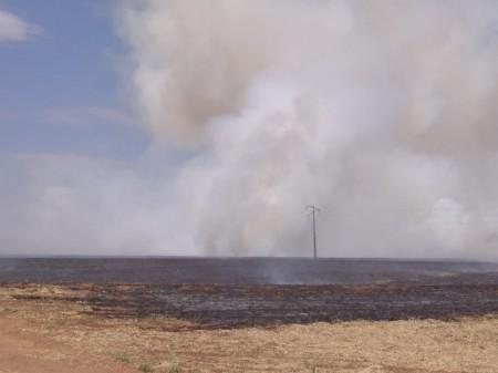 Incêndio destrói plantação de cana em Inúbia Paulista