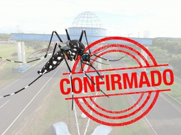 Secretaria de Saúde de Osvaldo Cruz confirma uma morte por dengue na cidade