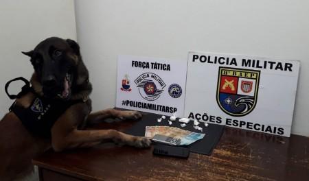 Cão farejador detecta presença de droga em vão de parede e homem é preso em flagrante por tráfico