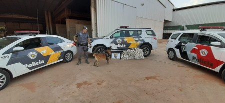 Fiscalização apreende carga de maconha em carreta na Rodovia Raposo Tavares