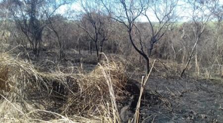 Polícia Ambiental constata crimes ambientais e autua usina sucroalcooleira em mais de R$ 362 mil
