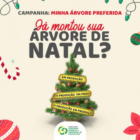 Termina nesta quarta-feira prazo para inscrição na campanha 'Minha Árvore de Natal Preferida' da Aceoc