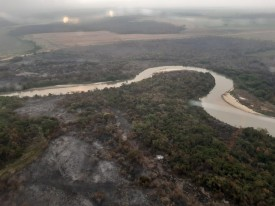 Incêndio no Parque Estadual do Aguapeí termina após sete dias; fogo consumiu cerca de 850 hectares
