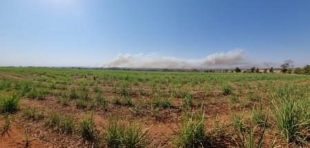 Incêndio destrói quase metade de reserva natural entre MS e SP e combate ao fogo entra na 'fase final'
