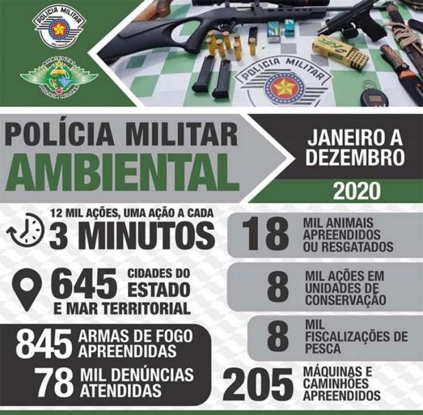 Polícia Militar Ambiental divulga resultados operacionais de 2020