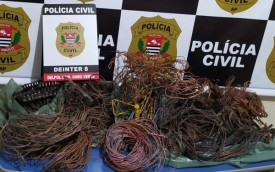 Suspeitos de envolvimento em furto e receptação de cabos de cobre são presos em Ouro Verde