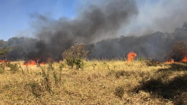Incêndio em vegetação é registrado próximo ao antigo IBC, em Osvaldo Cruz