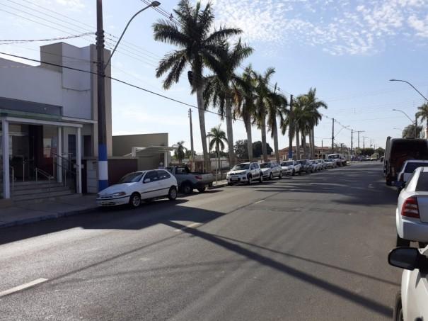 Depois de manifestação popular contrária a retirada das palmeiras imperiais do antigo Botinho, mudança do projeto mantém as árvores no terreno