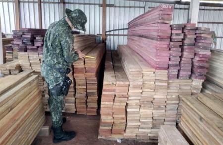 Polícia Ambiental faz advertências durante fiscalização à pátio madeireiro de Iacri