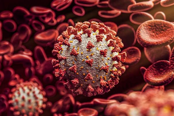 Salmourão chega a 309 casos confirmados de Covid-19 desde o início da pandemia