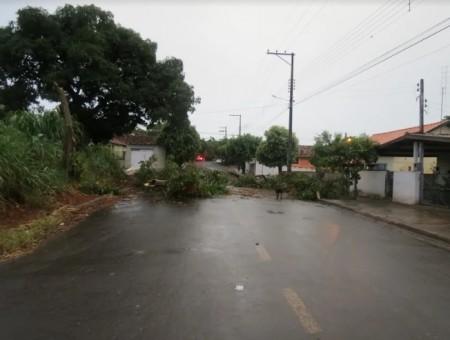 Chuva forte causa estragos em Osvaldo Cruz