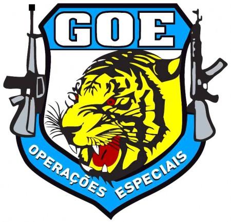 GOE apreende armas de fogo e munições em Parapuã