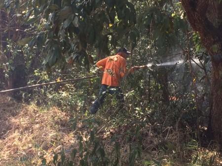 Incêndio atinge 12 mil m² de Área de Preservação Permanente na represa de Martinópolis