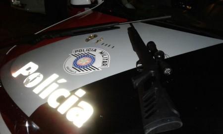 Menores são apreendidos com armas furtadas em Lucélia