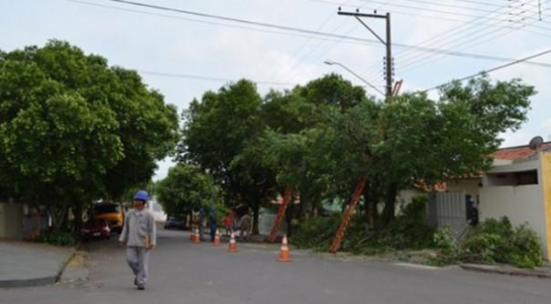 ANEEL aprova projeto que vai transformar restos de podas de árvores e de alimentos em adubo
