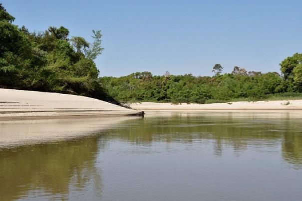 Parque Estadual do Aguapeí abre exposição 'Bicho: Quem te viu, quem te vê' em Nova Independência